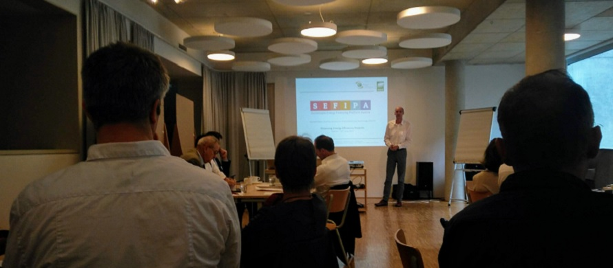 Financing guidelines for Energy Efficiency Services discussed with European stakeholders in Vienna
